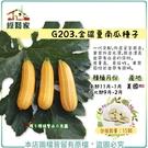 【綠藝家】G203.金礦夏南瓜種子15顆