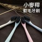 小頭細軟毛小麥桿成人牙刷【WSY3】 BOBI  11/03