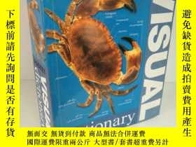二手書博民逛書店DK罕見Pocket Visual Dictionary (自然