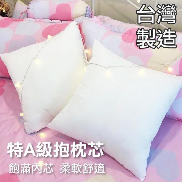 枕心、枕芯、抱枕、純白表布(1入) - 50x50cm MIT台灣製造、高品質、柔軟舒適、寢居樂