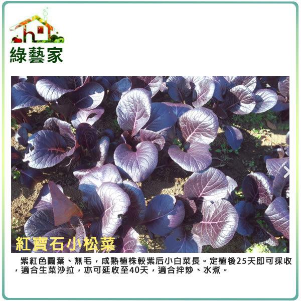 【綠藝家】A75.紅寶石小松菜種子50顆