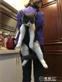 寵物背包便攜狗袋貓咪出行包狗狗包包胸前包泰迪外出包雙肩包    電購3C