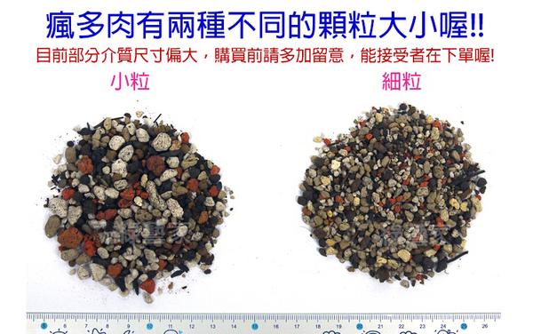 【綠藝家001-AA59】瘋多肉植物專用介質2公升分裝包-細粒