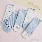襪子女中筒襪秋冬季棉襪長筒可愛日系INS潮夏季韓國短襪春秋卡通 韓語空間