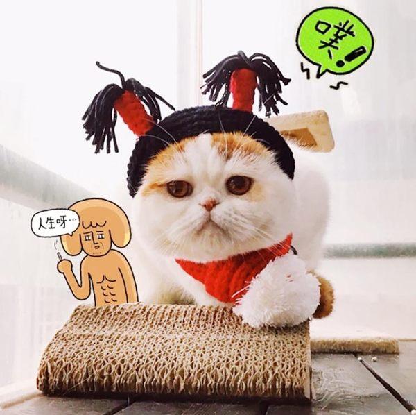 寵物頭套貓咪帽子寵物貓頭套可愛狗狗帽子貓貓新年帽貓咪頭飾裝扮圍巾圍脖 全網最低價