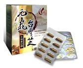 普羅拜爾 元氣 台灣芝(牛樟菌絲體) 60粒