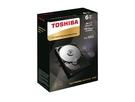 Toshiba 6TB【NAS碟】128M/7200轉/三年保(HDWN160AZSTA)【刷卡含稅價】