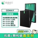 綠綠好日 HEPA 抗菌 濾芯 蜂巢顆粒活性碳 兩年組 適 COWAY AP-1019C 清淨機 空氣清淨機