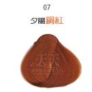 【挑染專用】彩靈EURO 彩色漂粉15g-07夕陽銅紅 [85837]