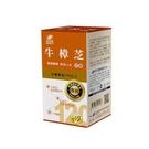 港香蘭 牛樟芝膠囊 120粒【瑞昌藥局】含多醣體
