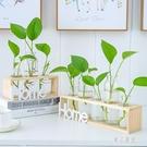 水培小花瓶創意玻璃綠蘿透明小清新水養植物桌面裝飾擺件客廳插花 LJ5190【極致男人】