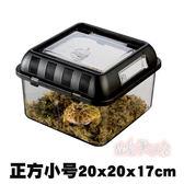 飼養箱 爬蟲飼養箱蜘蛛飼養盒烏龜缸角蛙蝎子守宮寵物蛇蜥蜴亞克力箱igo 寶貝計畫