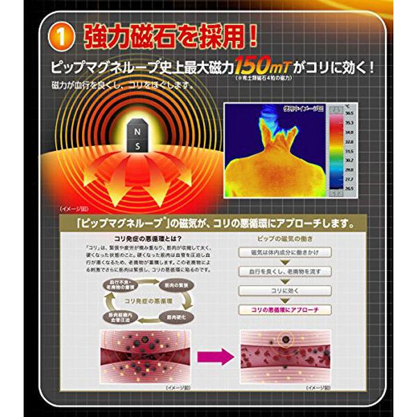 【日本原裝】易力氣磁力項圈EX 50公分 黑
