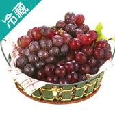 台灣溫室巨峰葡萄1盒(500g±5%/盒)【愛買冷藏】