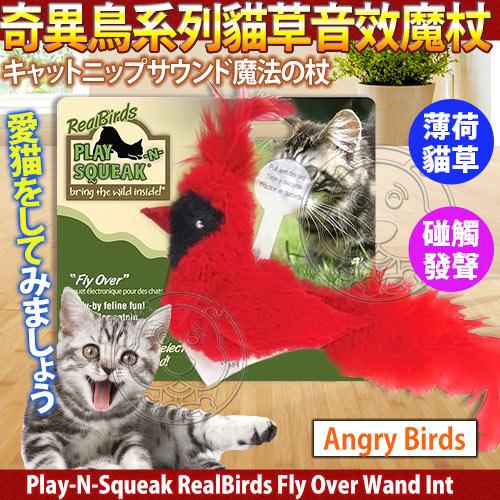 【 培菓平價寵物網 】美國Play-N-Squeak狂野森林》奇異鳥系列貓草音效魔杖-憤怒鳥