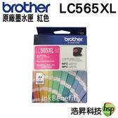 Brother LC565XL M 紅色 原廠墨水匣 盒裝 適用於J2310 J2510 J3520 J3720