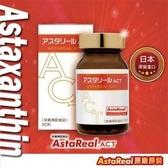 蝦紅素 有過力《日本原廠蝦紅素》60粒 ASTAREAL ACT