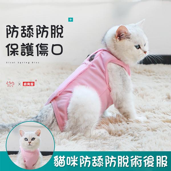 貓咪防舔防脫術後服 寵物結紮 貓咪防舔 母貓斷奶 手術護理服 寵物術後服 寵物防舔 貓術後服