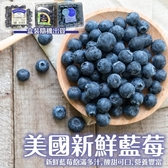 【果之蔬-全省免運】 美國進口藍莓(每盒125g±10%) x6盒