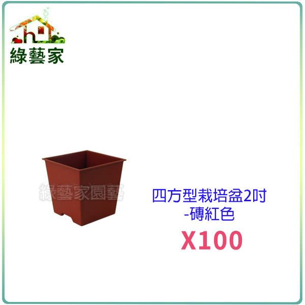 【綠藝家】四方型栽培盆2吋-磚紅色(厚) 100個/組