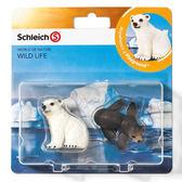 Schleich 史萊奇動物模型北極熊 & 小海獅_ SH21035