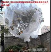 防鳥網果樹防蟲網蔬菜植物防鳥網防蟲網楊梅網罩全新料保用3年以上 【快速出貨】