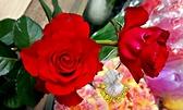 [品種隨機出貨]  紅色系玫瑰花盆栽 8吋盆活體盆栽 幾乎四季開花~務必先問有沒有貨~