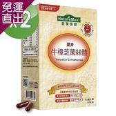 NatureMaxi金家倍健 牛樟芝菌絲體薑黃膠囊30顆/盒x2盒【免運直出】