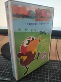 挖寶二手片-THD-403-正版VCD-動畫【大嘴鳥:一起玩系列 1-10 10碟】-國語發音(直購價)