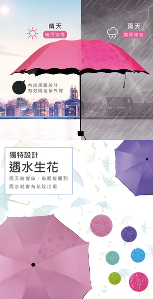 雨傘 奇幻開花晴雨兩用折疊傘 遇水開、遇光開兩種喔 現貨 !!!  我最便宜