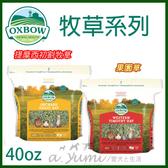 [寵樂子]《美國OXBOW》牧草系列-果園草/提摩西初割牧草40oz/小動物專用