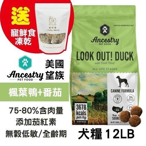 48H出貨送寵鮮食凍乾X1 Ancestry 美國望族 天然犬糧(無穀系列) 美國楓葉鴨+番茄 12LB/包