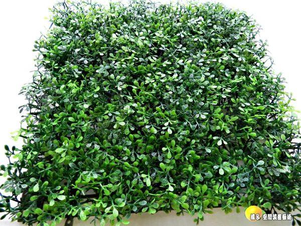 蜜栗假草皮.人造草皮.牆壁裝飾草皮.仿真草皮.室外腳踏墊 [ 約25*25cm ]