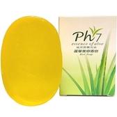 澎湖蘆薈香皂100g/塊