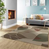 范登伯格 德克斯特輕柔絲光地毯-葉子(深)-140x200cm