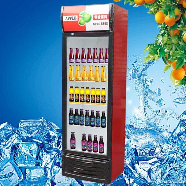 冷藏展示柜保鮮飲料柜商用超市冰箱小型啤酒柜立式大容量冷凍冰柜 橙子