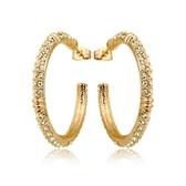 耳環 玫瑰金 925純銀鑲鑽-大氣精緻生日情人節禮物女飾品2色73gs107【時尚巴黎】