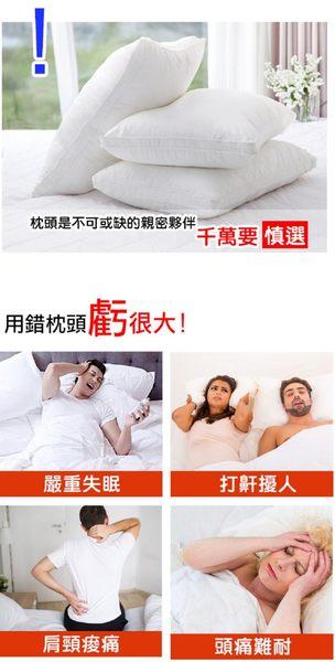 家e枕【YAMAKAWA】全方位護頸家E枕(雙入組)-電電購