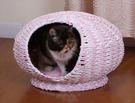 ★美國Petpals.粉紅甜美編織貓窩睡窩【P3276】,由環保紙編織而成,附有舒適的軟墊