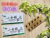 小金剛草本濃縮潤喉片 40錠/盒 全素可食 獨特添加紫錐花