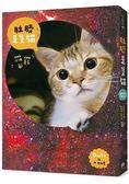 《肚臍是隻貓》首刷限定特仕版:內含喵星人收藏書盒 2017年桌曆 聖誕貓PVC夾