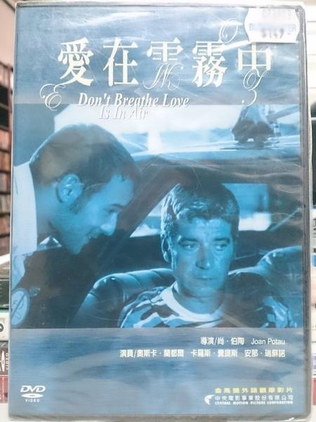 挖寶二手片-I18-024-正版DVD*電影【愛在雲霧中】奧斯卡蘭都爾*卡羅斯費提斯*安那瑞蘇諾