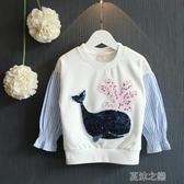 女童長袖-春秋裝韓版女童衛衣卡通亮片小海豚拼接蝙蝠袖上衣 夏沫之戀