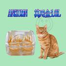 四個工作天出貨除了缺貨》Ankomn Turn-n-Seal 萬用盒1.0L(蝦)