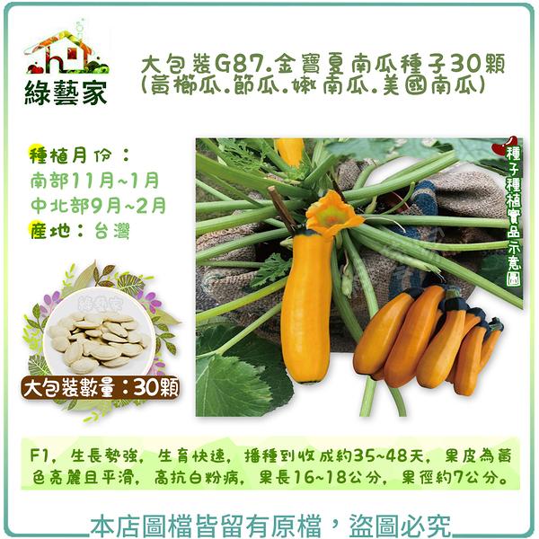 【綠藝家】大包裝G87.金寶夏南瓜種子(黃櫛瓜.節瓜.嫩南瓜.美國南瓜) 30顆