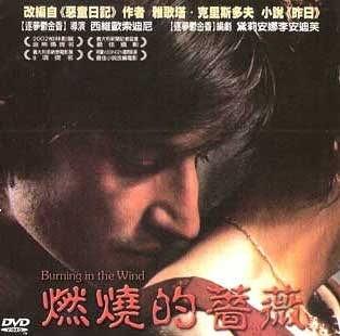 新動國際【燃燒的薔薇 Burning in the Wind】DVD便利包29元