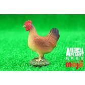 【MOJO FUN 動物模型】動物星球頻道獨家授權 - 母雞(站姿) 387052