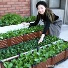 種菜盆種植箱陽台室內種菜神器長方形種樹盆葡萄家庭花盆露台樓頂 樂活生活館
