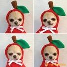 秋冬連帽衫寵物衣服貓咪衣狗狗搞笑衛衣水果裝【小獅子】