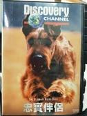 挖寶二手片-P17-086-正版VCD-其他【忠實伴侶】-Discovery自然類(直購價)